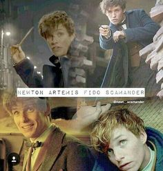 Newton Artemis Fido Scamander<< why iS HIS MIDDLE NAME ARTEMIS??? GODDESS OF THE HUNT?? IS THERE A REASON TO THIS THAT I HAVENT GOTTEN TO KNOW YET???