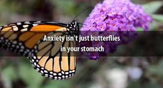 Anxiety isn't just butterflies in your stomach