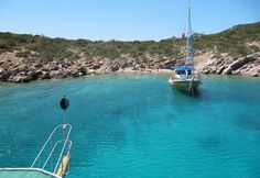 The Best Beaches of Turkey ... Calis Beach | Nature and Animals