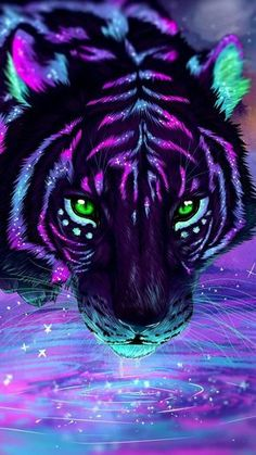 colorful tiger wallpaper for android and iphones, visit for more tech related content. Tiger Wallpaper, Cute Galaxy Wallpaper, Animal Wallpaper, Tiger Pictures, Baby Animals Pictures, Cute Animal Photos, Animals Images, Cute Fantasy Creatures, Mythical Creatures Art
