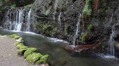 いるだけで癒される!箱根にある「千条の滝」でリフレッシュ - Find Travel
