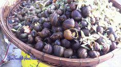 Asian Street Food | Cambodia Street Food- boiled snail, Khmer Rice, khme...