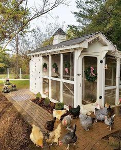 Gorgeous Coop #chickencoopplans #chickencooptips