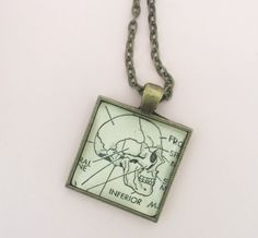 Vintage skull diagram Necklace. Perfect for Halloween or a great gift for your favorite science or anatomy teacher.    https://www.etsy.com/listing/459368412/skull-image-pendant-vintage-dictionary