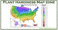 Plant Hardiness Map Zone | GrowingRealFood.com