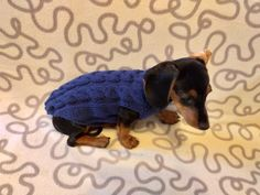 Navy blue knit sweater for dachshunds or small dogs,handmade knitted dog sweater, handmade knitted sweater for dachshund | dachshundknit Standard Dachshund, Mini Dachshund, Dachshund Clothes, Puppy Clothes, Yorkie Puppy, Chihuahua Puppies, Dog Sweaters, Warm Sweaters, Knitting Patterns For Dogs