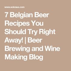 7 Belgian Beer Recipes You Should Try Right Away!  | Beer Brewing and Wine Making Blog