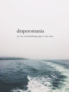 drapetomania (n.) - an overwhelming urge to run away •how appropriate a picture of the ocean is displayed here....it's almost like its taunting me