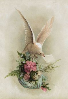 These are beautiful Victorian die cuts of white doves delivering flowers and a note. Description from antiqueimages.blogspot.com. I searched for this on bing.com/images