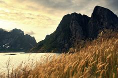 Lofoten, Norway - Limited Edition 1 of 25 Photograph Norway Landscape, Mountain Landscape, Urban Landscape, Landscape Design, Landscape Photos, Vintage Nature Photography, Beautiful Landscape Photography, Beautiful Landscapes, Digital Photography