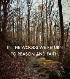 In the woods.. Phrase Cute, Great Quotes, Inspirational Quotes, Uplifting Quotes, Awesome Quotes, Meaningful Quotes, Motivational Quotes, Nature Quotes Adventure, All Nature