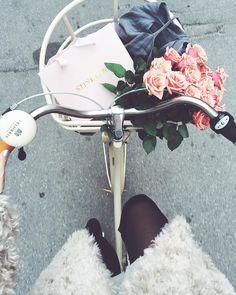 Hanna Stefansson sur Instagram: