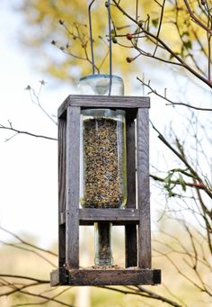 Small bird and squirrel feeder using wine bottle I could fee the WHOLE forest :)