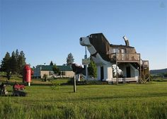 Do You Like Dogs? Then Perhaps You Would Enjoy Sleeping Inside a Giant Wooden Dog.