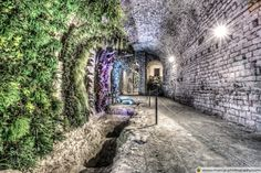 A Garden in the Basement (Girona Cathedral Catalonia) by marcgc #architecture #building #architexture #city #buildings #skyscraper #urban #design #minimal #cities #town #street #art #arts #architecturelovers #abstract #photooftheday #amazing #picoftheday
