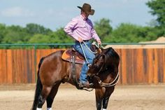 Clinton Anderson: calming the over-anxious horse