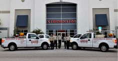 They provide best X Terminator Pest control services in Boca Raton Florida.  X Terminator Pest Control Services include Mosquito Control, Termite Control, Treatment and Inspection, Whitefly Control and Treatment, Rodent Control, Bee Removal, Ant Control, Roach Control, Flea & Tick Control, Spider Control, Lawn Care, Spraying and Pest Control!