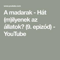 A madarak - Hát (m)ilyenek az állatok? (9. epizód) - YouTube Math Equations, Film, Youtube, Movie, Film Stock, Cinema, Films, Youtubers, Youtube Movies