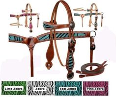 this is the same as my horse gear