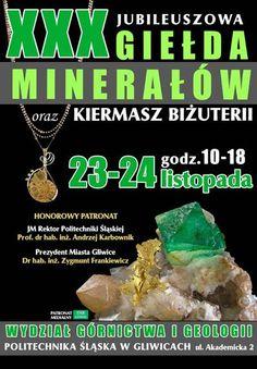 Lapis Shop na Jubileuszowej Giełdzie Minerałów oraz Kiermaszu Biżuterii w Gliwicach 23-24 listopada 2013