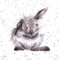 "Birthday / Blank Artist Greeting Card (WRE2067) Rabbit - ""Bath Time"" Wrendale Designs http://www.amazon.co.uk/dp/B00NVA6P96/ref=cm_sw_r_pi_dp_-f1hwb0Z0QEET"