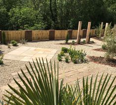 Oak sleeper steps, golden fossil paving and tropical style planting Sleeper Steps, Oak Sleepers, Tropical Style, Planting, Fossil, Garden Design, Gardens, Patio, Building