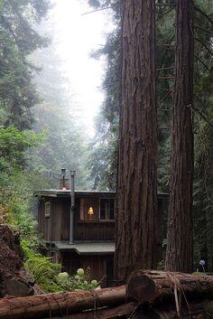 Oregon Cabin.