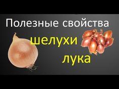Полезные свойства шелухи лука. Как делать отвар из шелухи. - YouTube Garlic, Vegetables, Health, Food, Health Care, Essen, Vegetable Recipes, Meals, Yemek