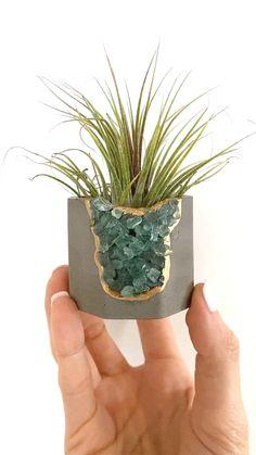 Diy Concrete Planters, Diy Planters, Clay Planter, Painted Plant Pots, Plant Crafts, Plant Holders, House Plants, Flower Pots, Creations