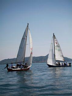 team building sailing match race