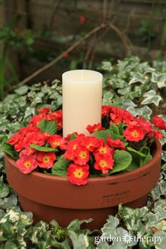 This outdoor candle planter can be made in just 10 minutes. Annuals, terracotta pots and a candle as the centerpiece makes beautiful outdoor table decor. Outdoor Table Decor, Outdoor Candles, Outdoor Lighting, Lighting Ideas, Garden Crafts, Garden Projects, Garden Art, Tire Garden, Garden Ideas