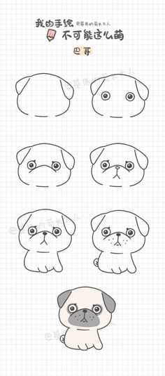 如何画巴哥,来自@基质的菊长大人
