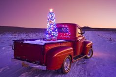 Vintage red Ford pick-up truck with Christmas wreath on the bumper and tree in the back parked in rural area at sunset in the Rio Grande Valley of New Mexico - Stock Photos : Masterfile Christmas Red Truck, Vintage Christmas, Xmas, Country Christmas, Family Christmas, Christmas Humor, Christmas Ideas, Merry Christmas, Balsam Hill Christmas Tree