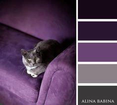 995 best images about Paint Chips on Pinterest   Color pallets ...