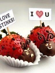 Ladybugs - strawberry & choocolate