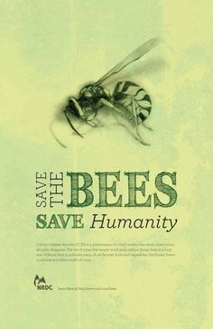 Bees:  Save the #Bees. Save Humanity. by lorid54