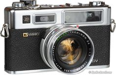 Yashica Electro 35 Rangefinder film camera. My dad bought this while stationed in Vietnam in the late 60s and recently gave it to me.