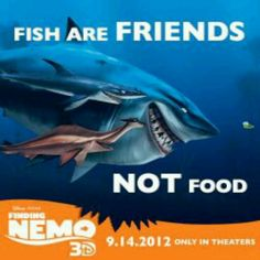 Remember this during Shark Week. Disney Mickey, Disney Pixar, Finding Nemo Quotes, Happy Shark, Oliver And Company, Resident Assistant, Believe In Magic, Shark Week, Disney Quotes