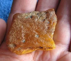 Antique Yellow Honey Cognac Butterscotch Natural Baltic Amber Stone 12 gr 老琥珀