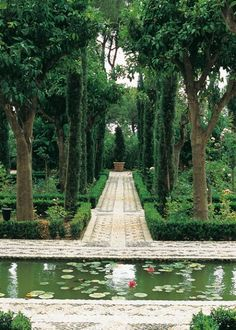 Landscape designer Manuel García Ferreira at Incosol Hotel Marbella; pond at far end of walkway