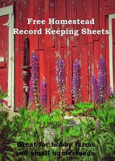 FREE Printable Farm Record Sheets. Perfect for small hobby farms and homesteads. Includes pages for animal records, production records, breeding records, garden records and harvest/preservation records.   http://wildflowerfarm.org