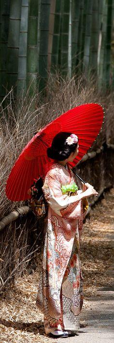 Bamboo Geisha – A random encounter with Japan's rare and dwindling Geishas. Arashiyama, Kyoto ~ by Kory Carpenter Kimono Japan, Japanese Kimono, Japanese Girl, Kyoto, Furisode Kimono, Yukata, Image Beautiful, Memoirs Of A Geisha, Turning Japanese