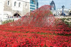 The Tower of London Poppies: Blood Swept Lands and Seas of Red. An article on Blood Swept Lands was published in the February 2015 issue of Ceramics Monthly. http://ceramicartsdaily.org/ceramics-monthly/ceramics-monthly-february-2015/