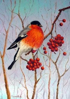 Gallery.ru / Фото #4 - Ягодки зимой - Anneta2012