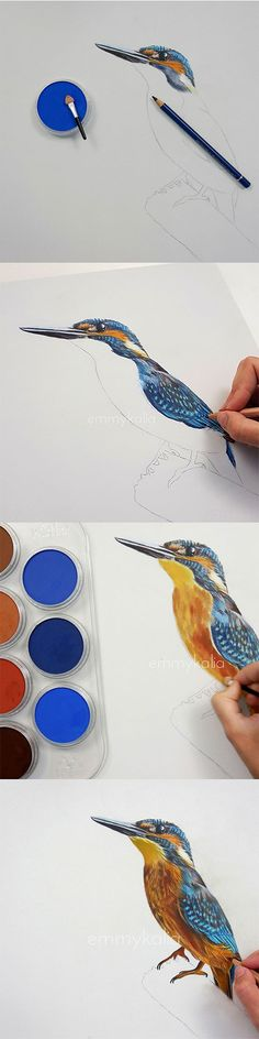 How to draw a realistic Kingfisher with Panpastel and Colored pencils!