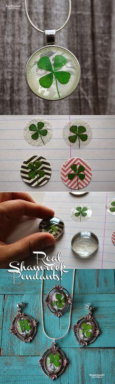 Real 4-Leaf Clover Shamrock Pendant!