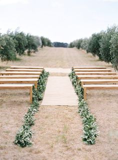 Olive Wedding Confetti and Decoration Ideas -- When it comes to aisle decorations for outdoor weddings, olive leaves are a wonderful choice. Simply line the aisle with lots of olive leaves - simple, stylish and an easy DIY job.