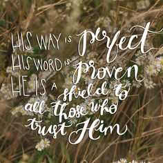 """Psalm 18:30 - """"As for God, His way is perfect; The word of the Lord is proven; He is a shield to all who trust in Him."""" - That moment you realise how shamefully impatient you have been."""