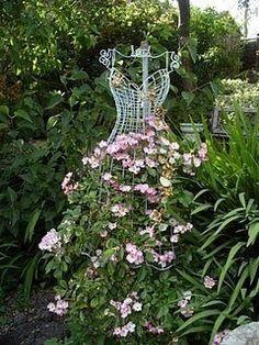 climbing rose dress frame