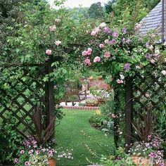Roses on the trellis